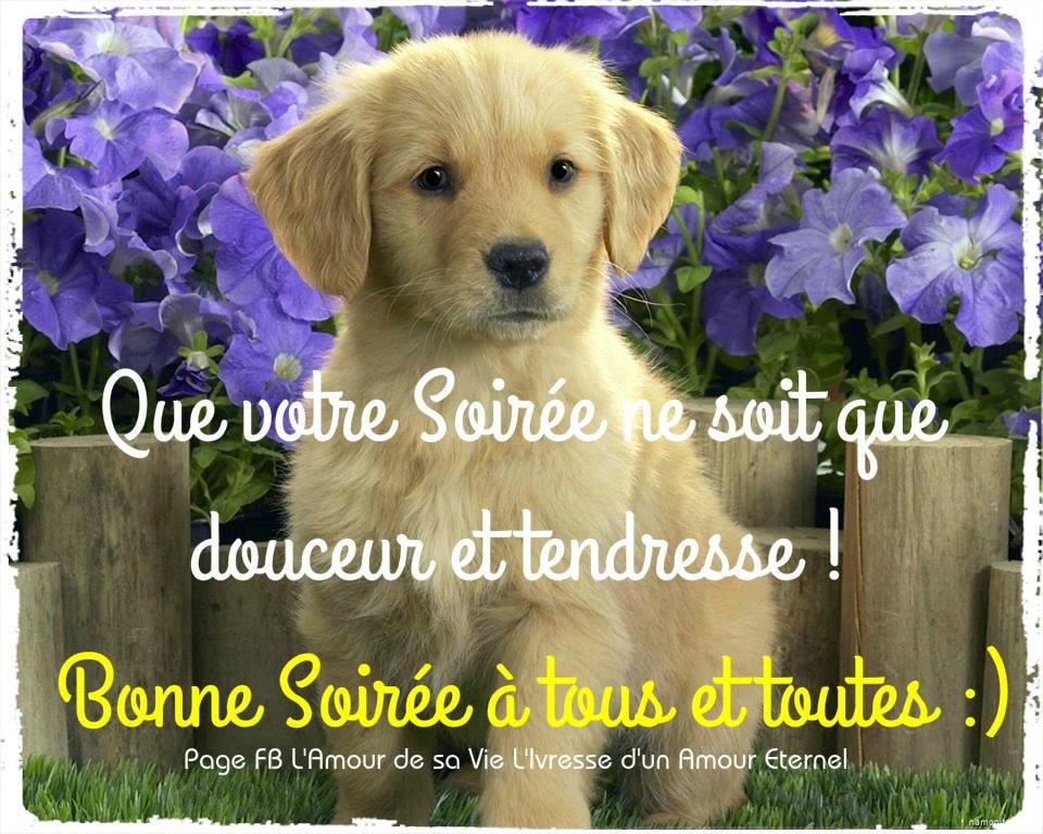 Bonne Soirée à tous et toutes :)