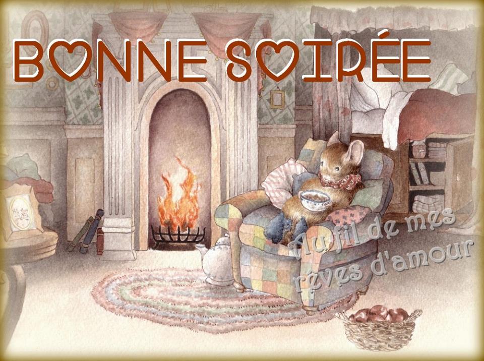 bonne-soiree_079