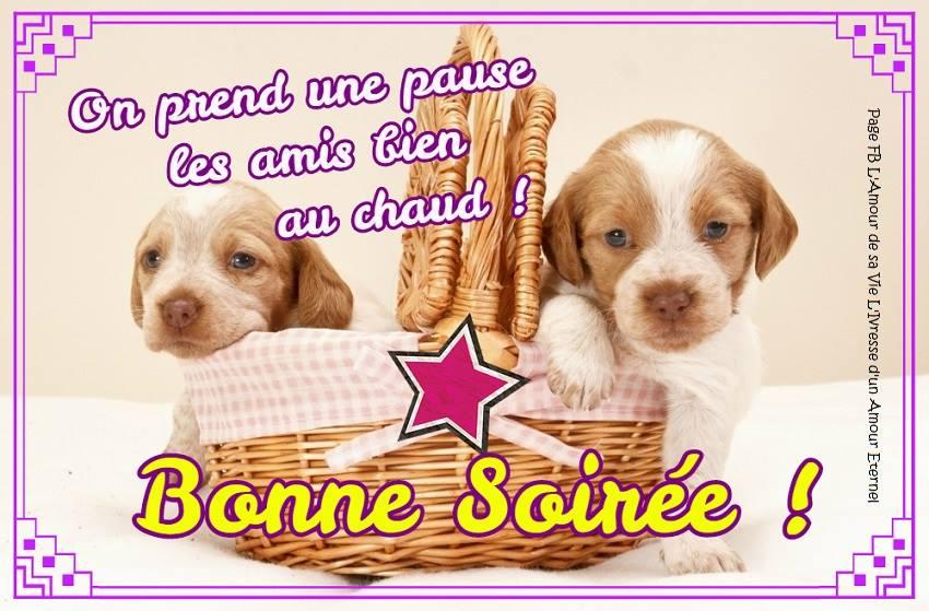 bonne-soiree_092