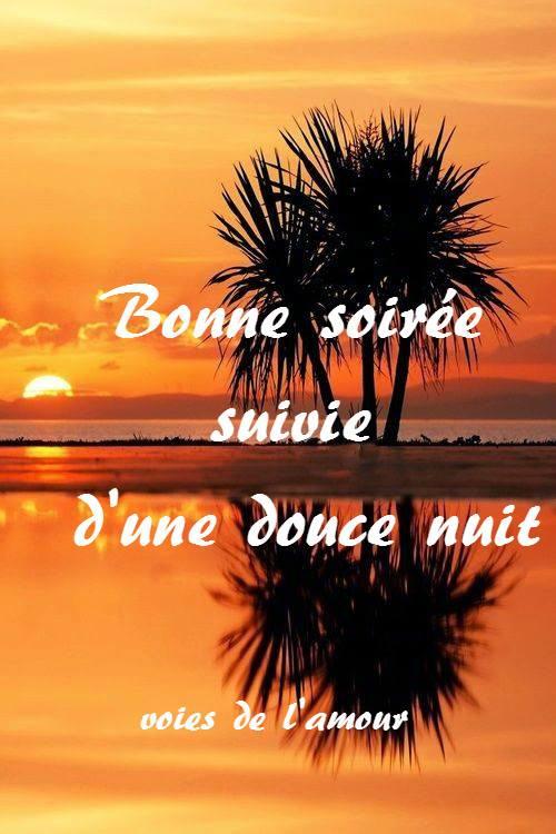 bonne-soiree_095
