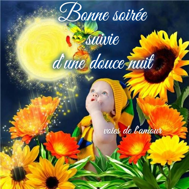 Image result for bonne soiree