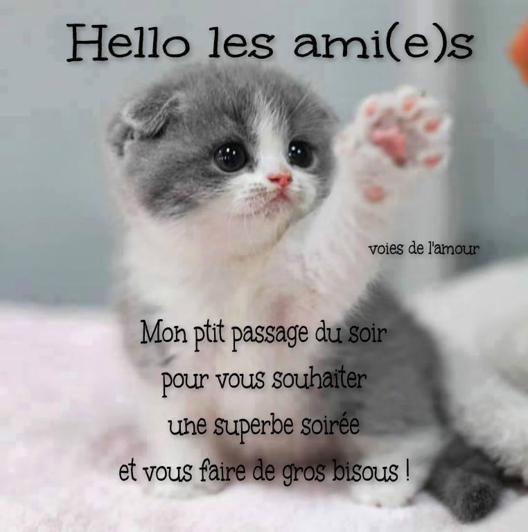 Hello les ami(e)s