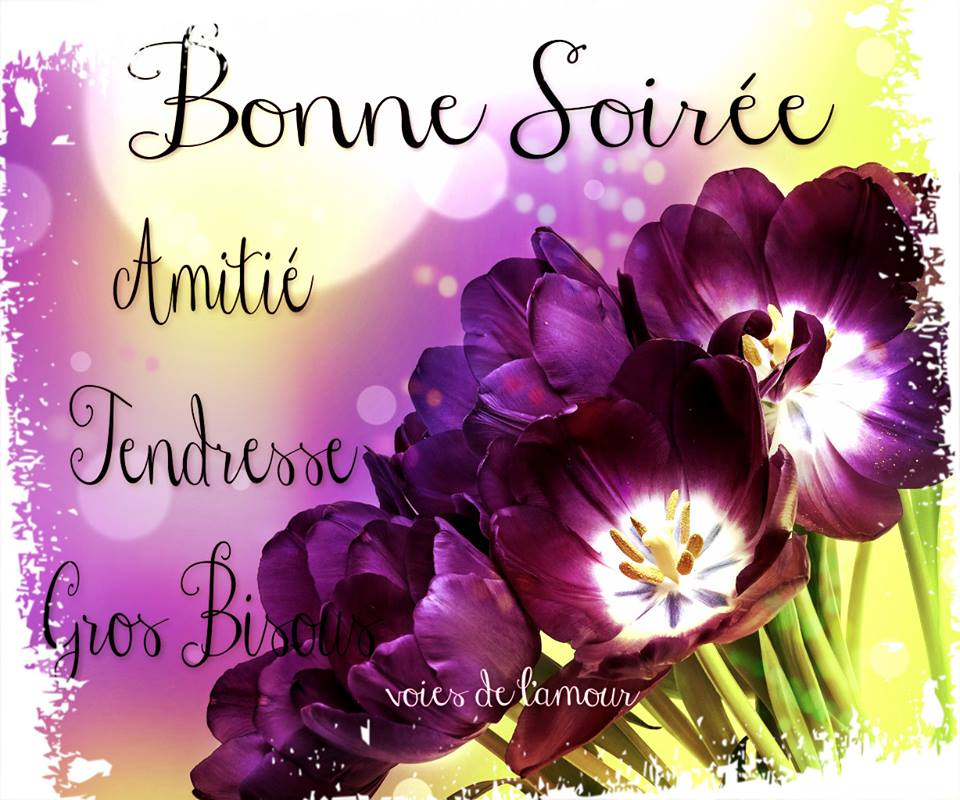 http://img1.bonnesimages.com/bi/bonne-soiree/bonne-soiree_121.jpg