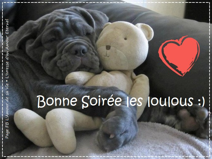 bonne-soiree_123