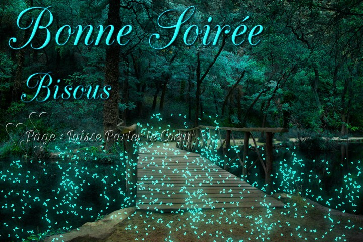 bonne-soiree_127