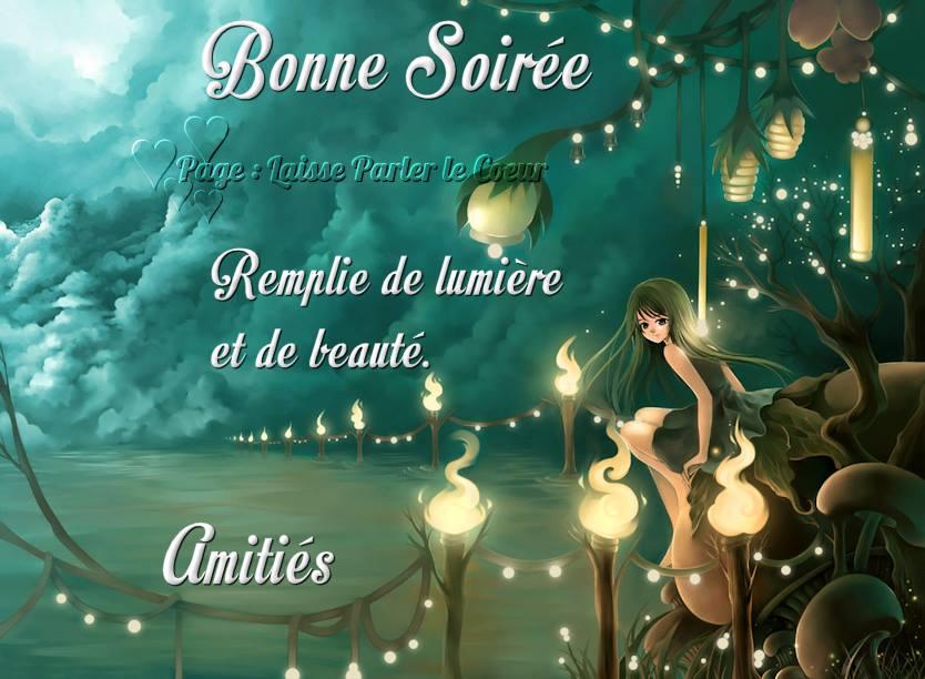 bonne-soiree_133