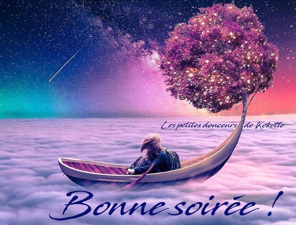 Que suis -je et où? ajonc -25 février Bravo Martine Bonne-soiree_184