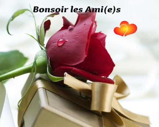 Bonsoir image 2