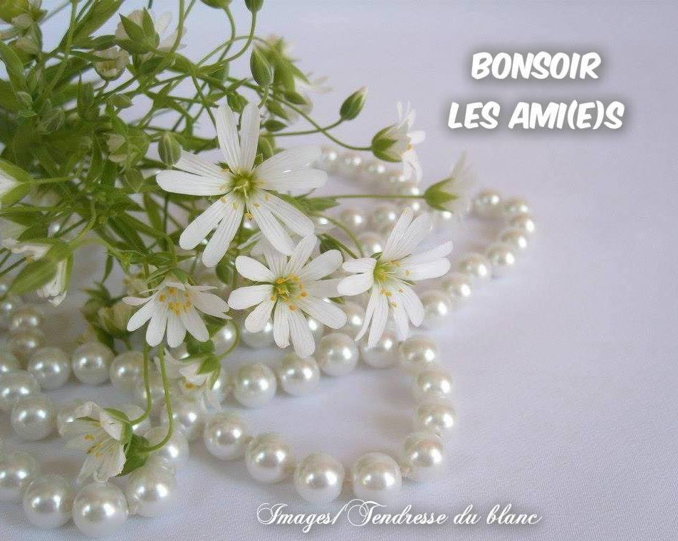 Bonsoir image 8