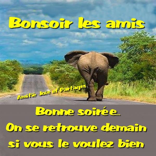 Bonsoir image 9