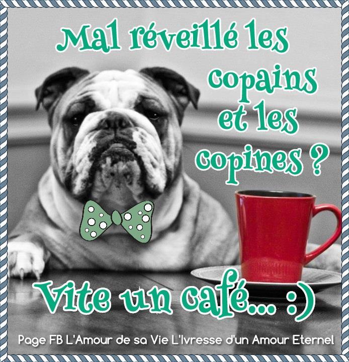 Café image 9