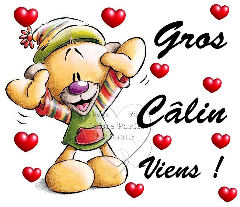Câlins image 1