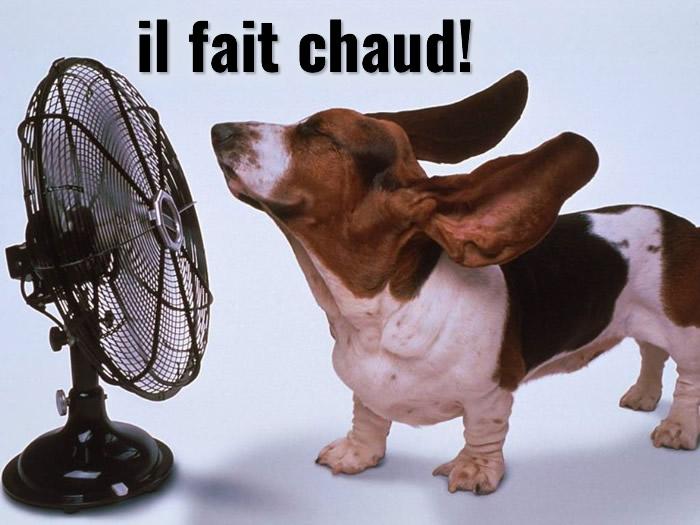 Chaud image 5