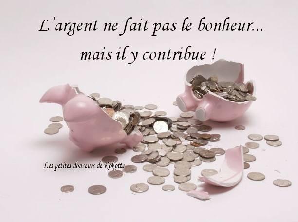 L'argent ne fait pas le bonheur... mais il y contribue !