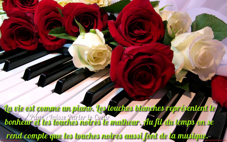 La vie est comme un piano...