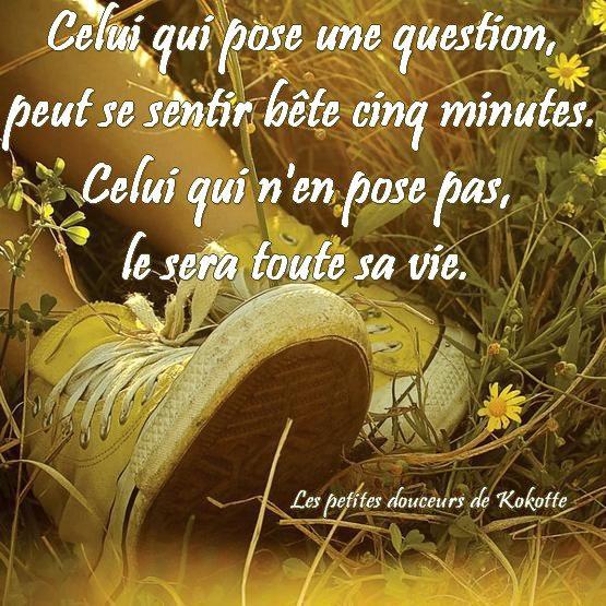 Celui qui pose une question, peut se sentir bête cinq minutes....