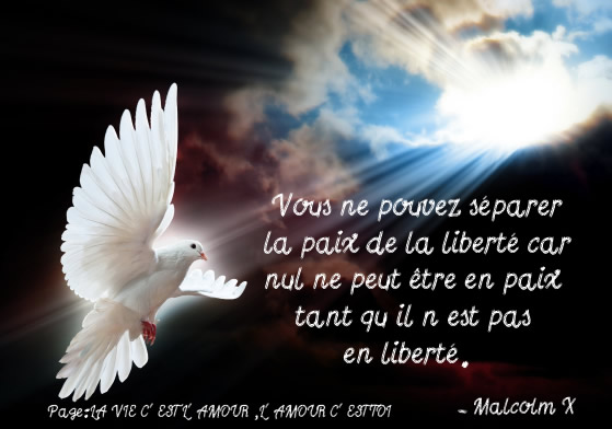 Vous ne pouvez séparer la paix de la liberté...