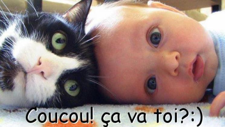 Coucou! ça va toi? :)