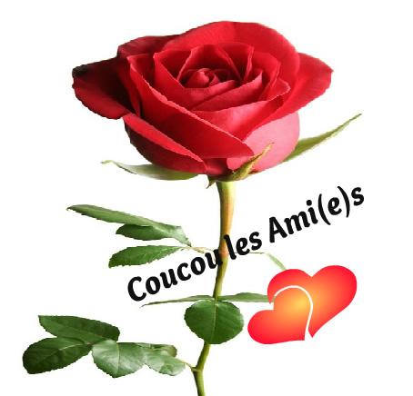 coucou_004