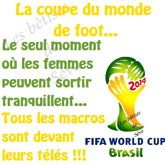 La coupe du monde de foot
