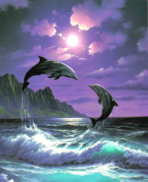 Dauphins 1