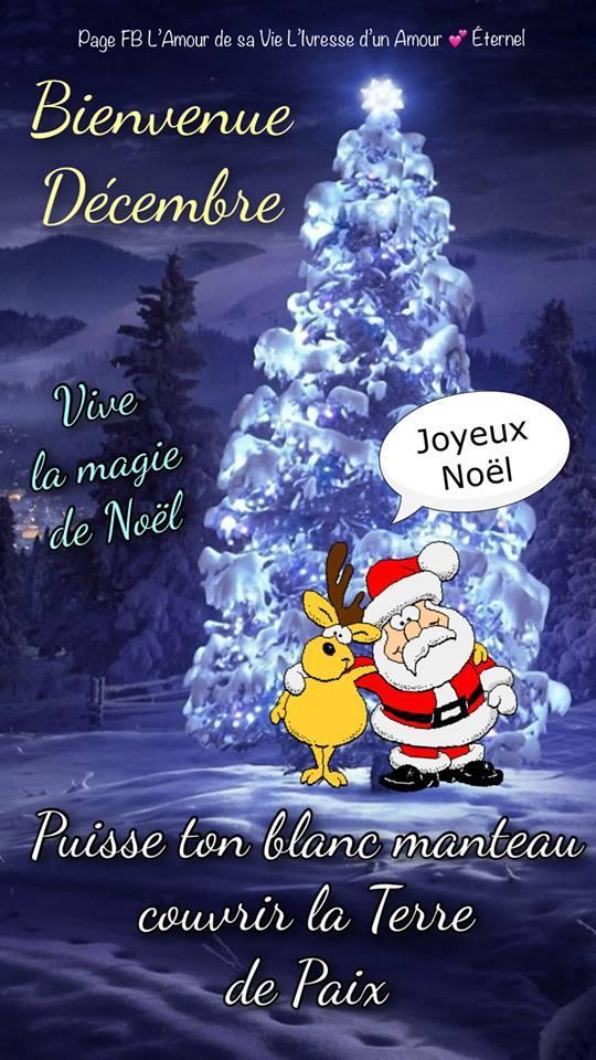 Bienvenue Décembre. Vive la magie de Noël. Puisse ton blanc manteau couvrir la Terre de Paix. Joyeux Noël.