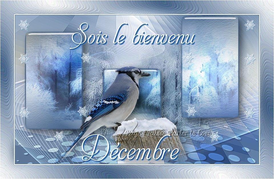 Sois le bienvenu Décembre