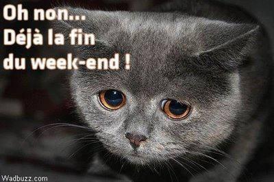 Oh non... Déjà la fin du week-end !