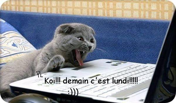 Koi !! demain c'est lundi !!