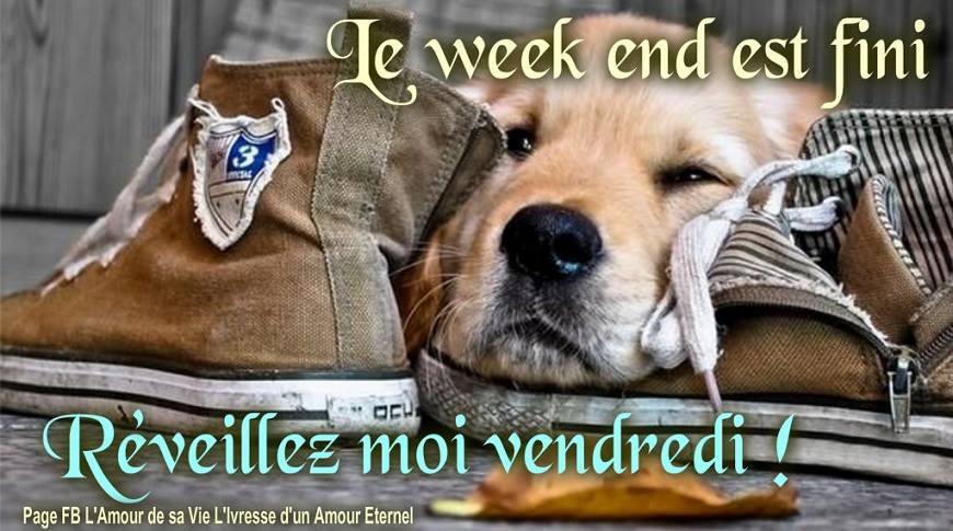 Le week end est fini. Réveillez moi vendredi !