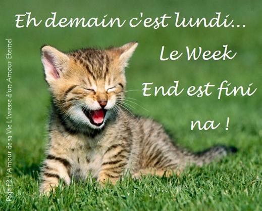 Eh demain c'est lundi... le week end est...