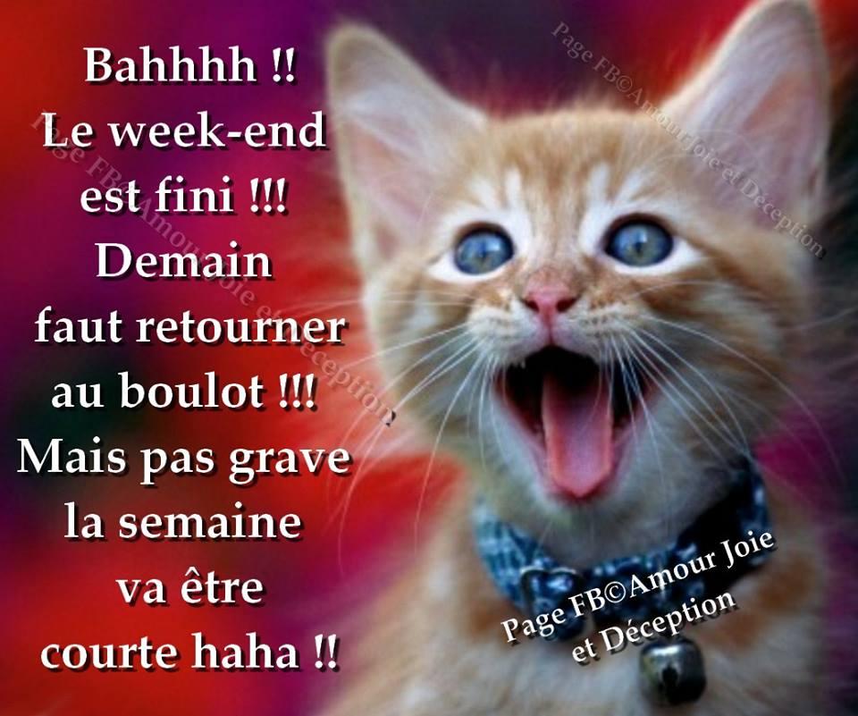 Bahhhh !! Le week-end est fini !!!