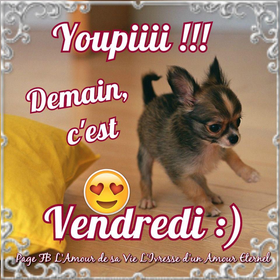 Youpiiii !!! Demain, c'est Vendredi :)