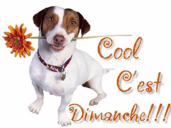 Cool C'est Dimanche!!!