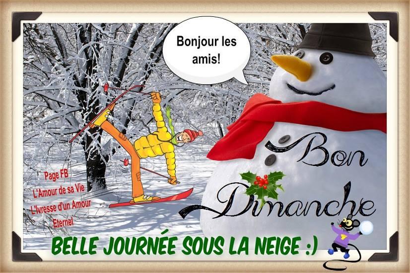 Bonjour les amis! Bon Dimanche. Belle Journée sous la neige :)
