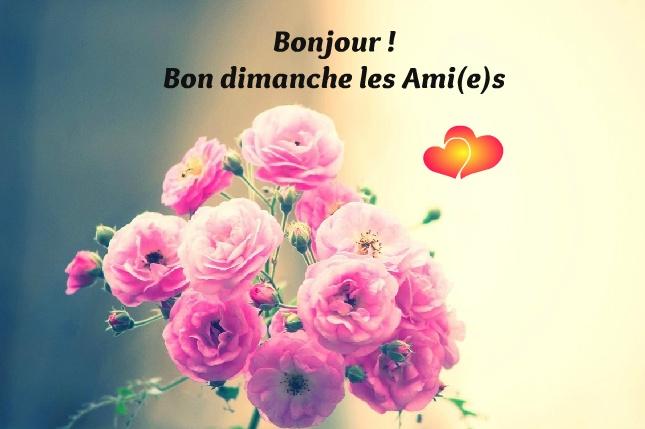 Bonjour ! Bon dimanche les Ami(e)s