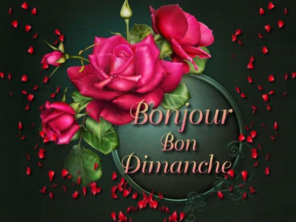 Bon Dimanche image 9