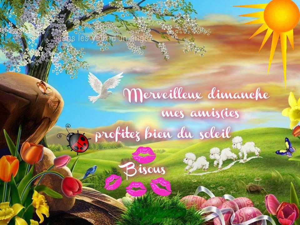 Merveilleux dimanche mes amis(ies). Profitez bien du soleil