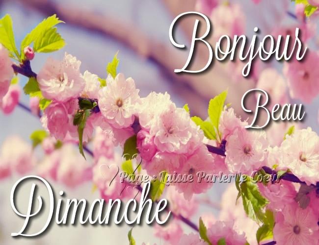 Bonjour, Beau Dimanche