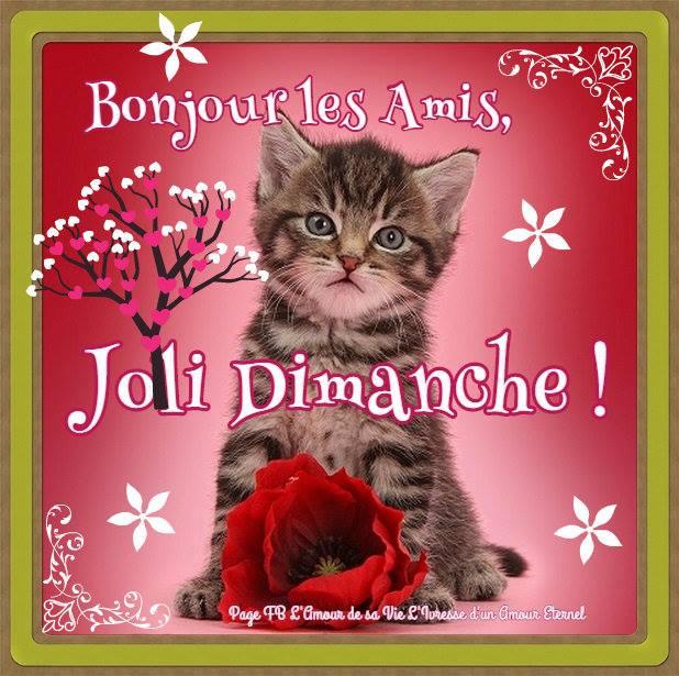 Bonjour les Amis, Joli Dimanche !