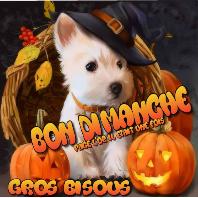 "Résultat de recherche d'images pour ""bon dimanche  bisous halloween"""