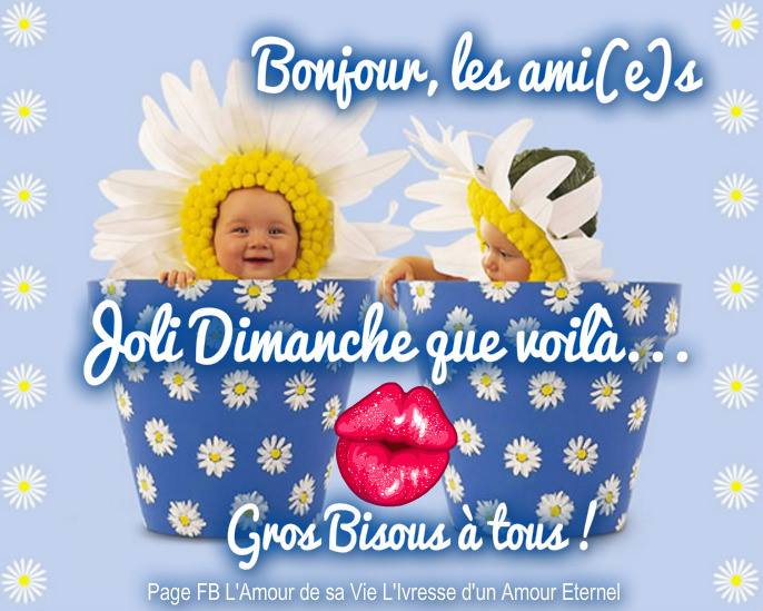 Bonjour, les ami(e)s. Joli Dimanche que voilà...