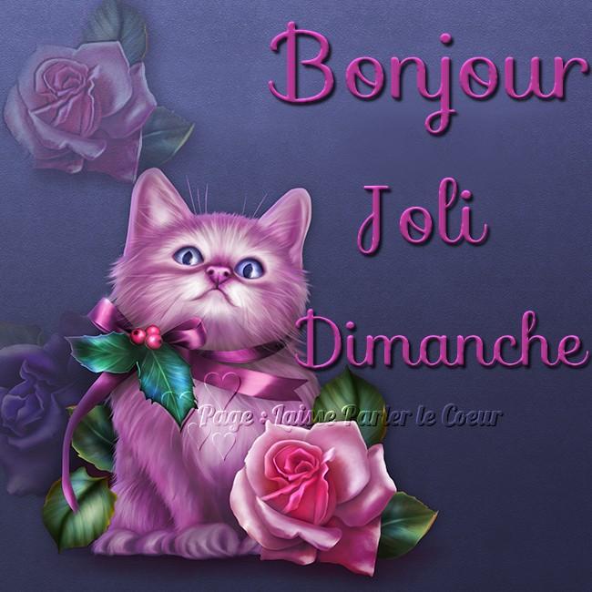 Bonjour, Joli Dimanche