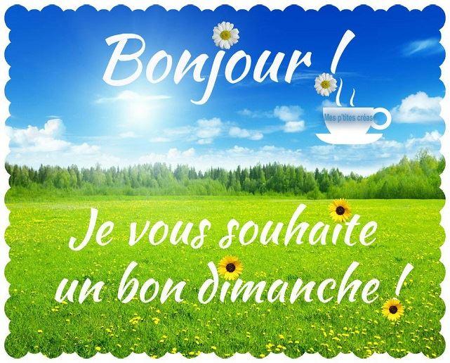 Bonjour ! Je vous souhaite un bon dimanche !