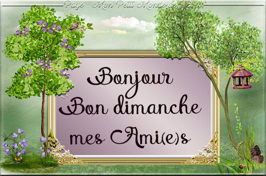 Bonjour, Bon dimanche mes Ami(e)s
