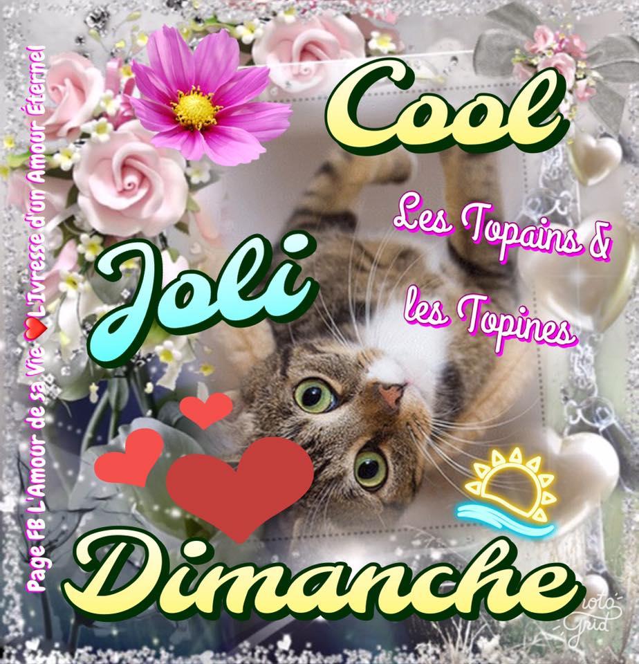 Joli Dimanche