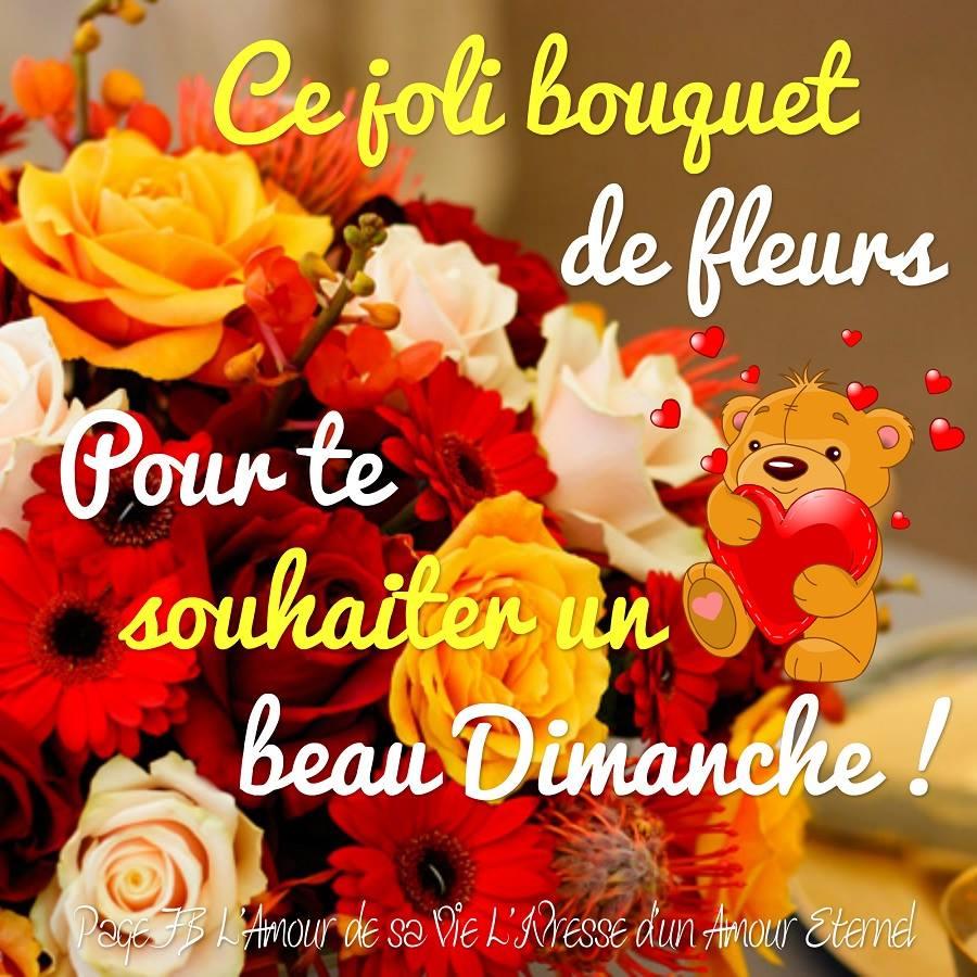 Ce joli bouquet de fleurs pour te...