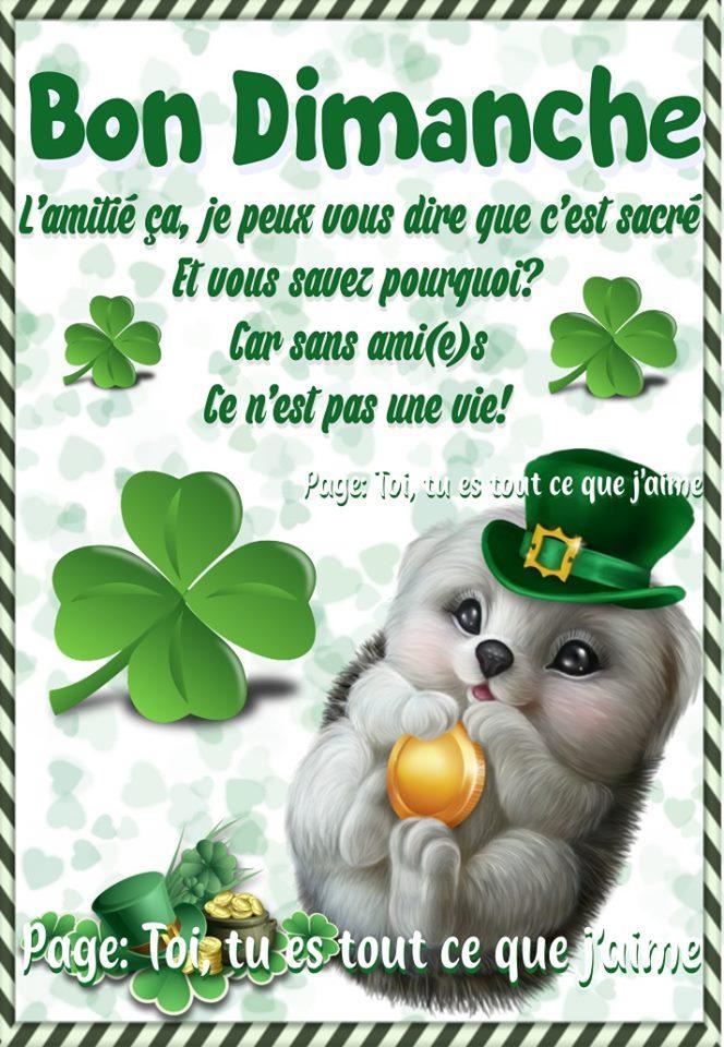 Bon Dimanche L'amitié...