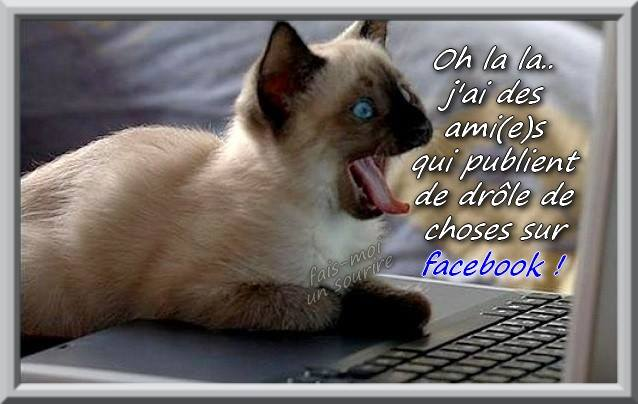 Oh la la... j\'ai des ami(e)s qui publient de drôle de choses sur facebook ! image #7527 ...