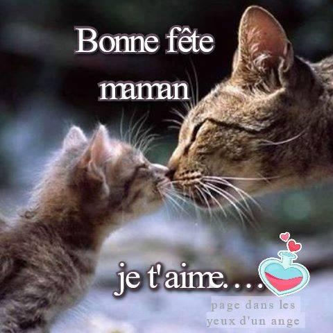 Bonne fête maman, je t'aime...
